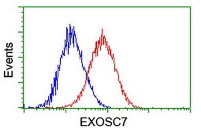 EXOSC7 Mouse anti-Human, Clone: OTI1F4, liquid, TrueMAB  100 µL; Unconjugated