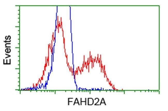 FAHD2A Mouse anti-Human, Clone: OTI7C9, liquid, TrueMAB  100 µL; Unconjugated