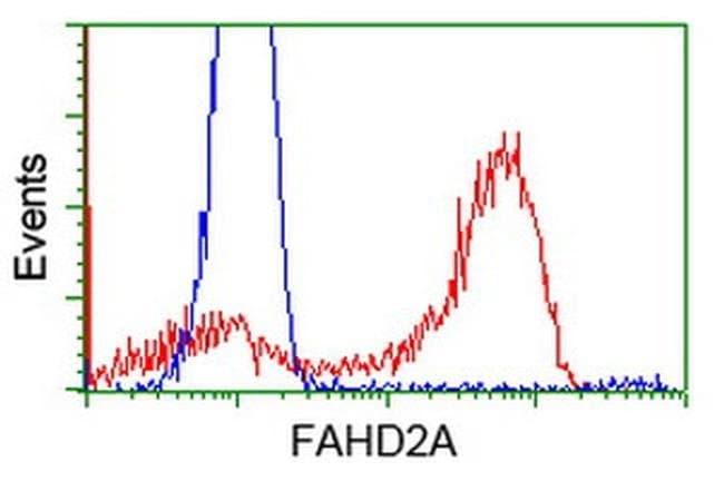 FAHD2A Mouse anti-Human, Clone: OTI9G1, liquid, TrueMAB  100 µL; Unconjugated