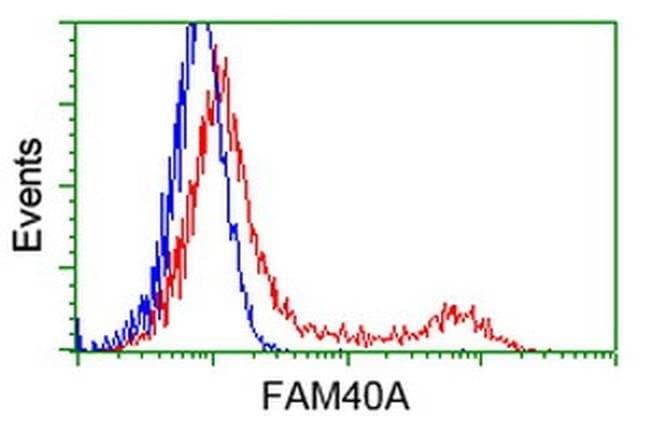 FAM40A Mouse anti-Canine, Human, Rat, Clone: OTI7G7, liquid, TrueMAB  100