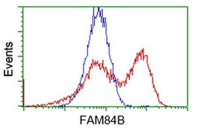 FAM84B Mouse anti-Human, Clone: OTI5G5, liquid, TrueMAB  100 µL; Unconjugated