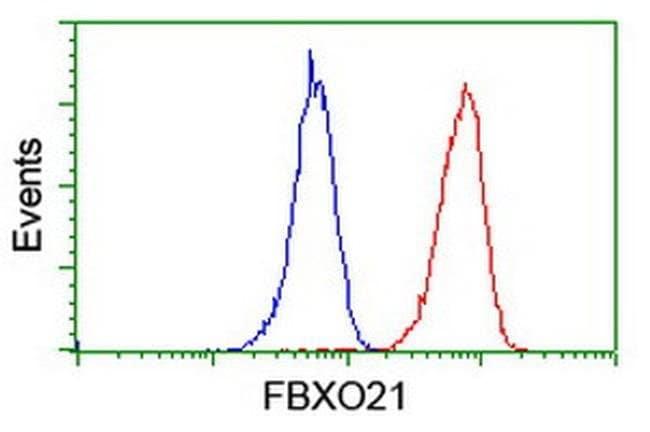 FBXO21 Mouse anti-Human, Clone: OTI1E1, liquid, TrueMAB  100 µL; Unconjugated