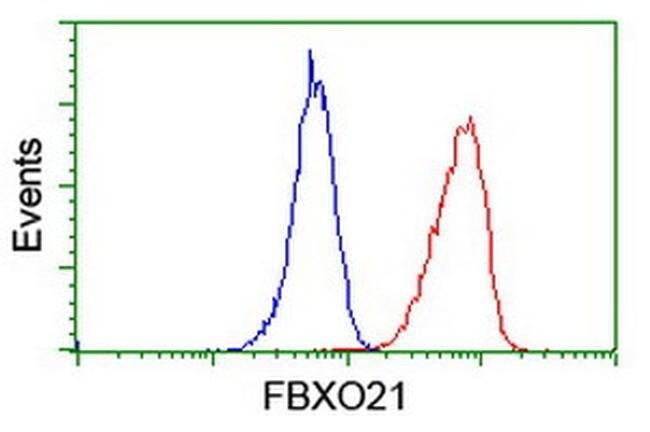 FBXO21 Mouse anti-Human, Clone: OTI3C11, liquid, TrueMAB  100 µL;