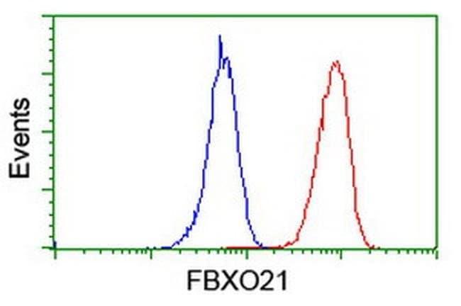 FBXO21 Mouse anti-Canine, Human, Mouse, Rat, Clone: OTI2C7, liquid, TrueMAB