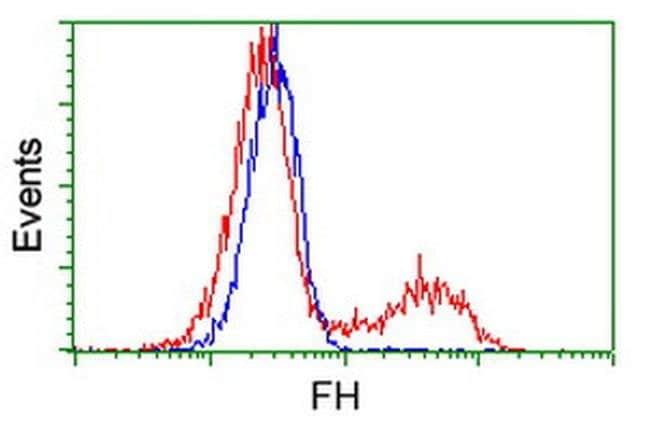 FH Mouse anti-Canine, Human, Rat, Clone: OTI9G4, liquid, TrueMAB  100 µL;