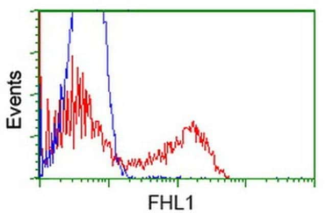 FHL1 Mouse anti-Human, Clone: OTI2E1, liquid, TrueMAB  100 µL; Unconjugated