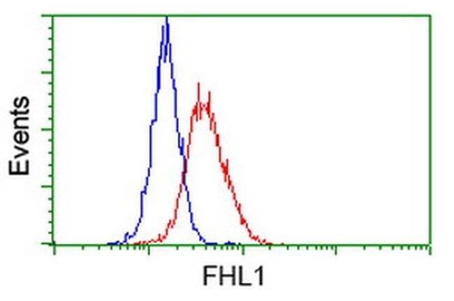 FHL1 Mouse anti-Human, Rat, Clone: OTI3G7, liquid, TrueMAB  100 µL;