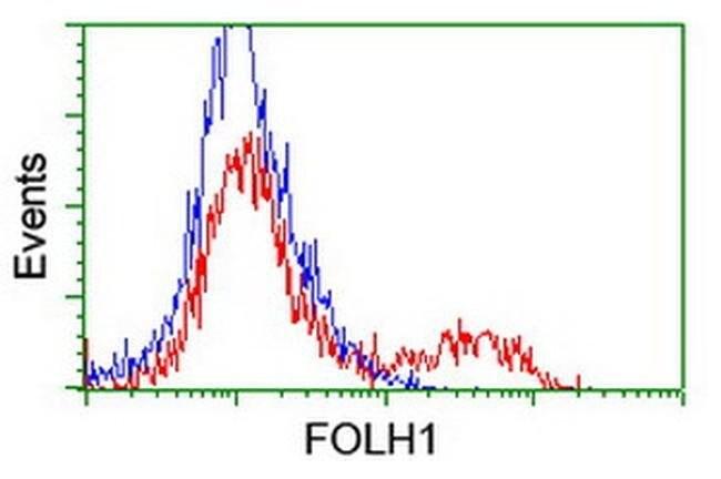 FOLH1 Mouse anti-Human, Mouse, Clone: OTI3H5, liquid, TrueMAB  100 µL;