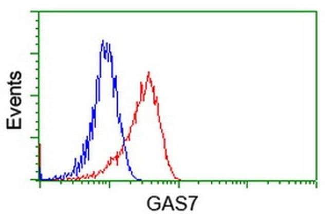 GAS7 Mouse anti-Human, Clone: OTI6G5, liquid, TrueMAB  100 µL; Unconjugated