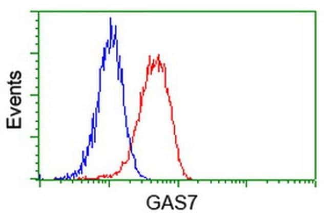 GAS7 Mouse anti-Human, Clone: OTI4E6, liquid, TrueMAB  100 µL; Unconjugated