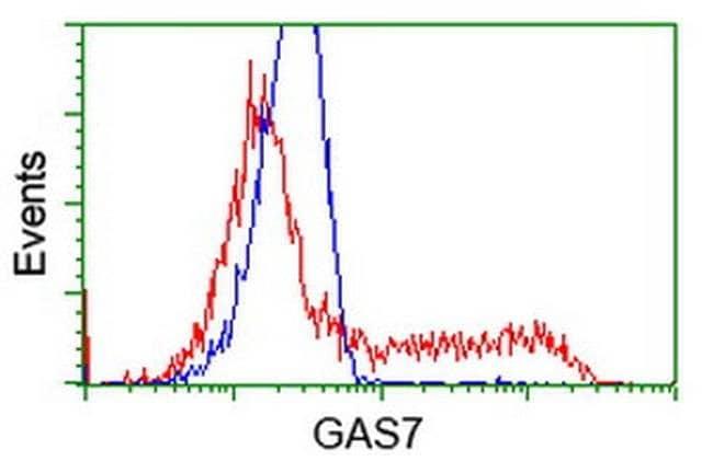 GAS7 Mouse anti-Human, Clone: OTI8H10, liquid, TrueMAB  100 µL; Unconjugated