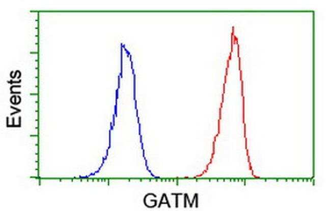 GATM Mouse anti-Human, Clone: OTI1E3, liquid, TrueMAB  100 µL; Unconjugated