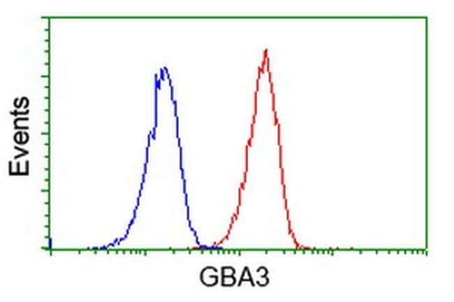 GBA3 Mouse anti-Human, Clone: OTI5G3, liquid, TrueMAB  100 µL; Unconjugated