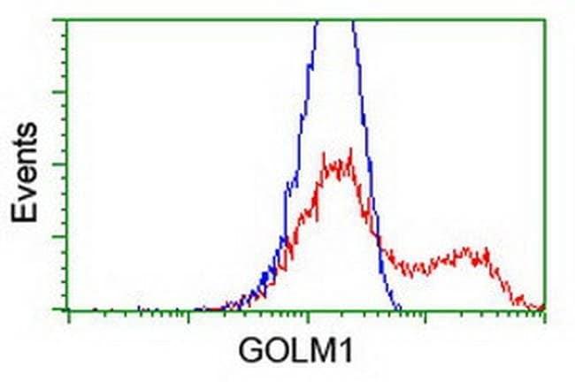 GOLM1 Mouse anti-Human, Clone: OTI2D6, liquid, TrueMAB  100 µL; Unconjugated