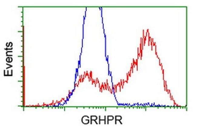 GRHPR Mouse anti-Human, Clone: OTI9E6, liquid, TrueMAB  100 µL; Unconjugated