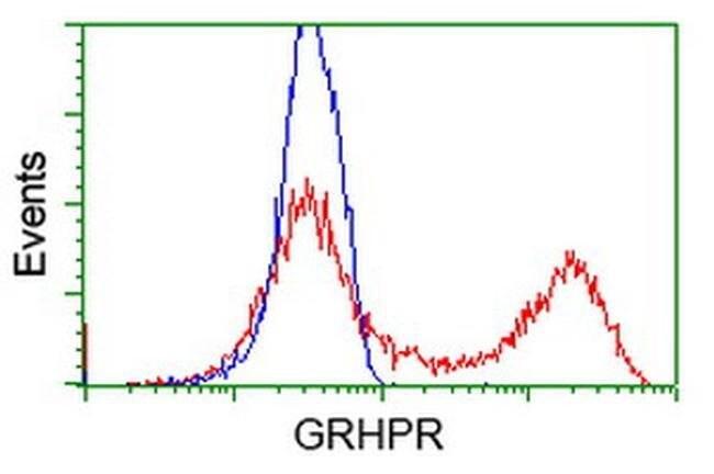 GRHPR Mouse anti-Human, Clone: OTI10A3, liquid, TrueMAB  100 µL; Unconjugated