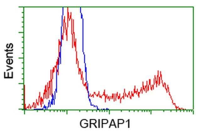 GRIPAP1 Mouse anti-Human, Clone: OTI2C11, liquid, TrueMAB  100 µL;