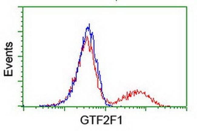GTF2F1 Mouse anti-Human, Clone: OTI1C5, liquid, TrueMAB  100 µL; Unconjugated