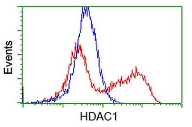 HDAC1 Mouse anti-Human, Clone: OTI6F11, liquid, TrueMAB  100 µL; Unconjugated