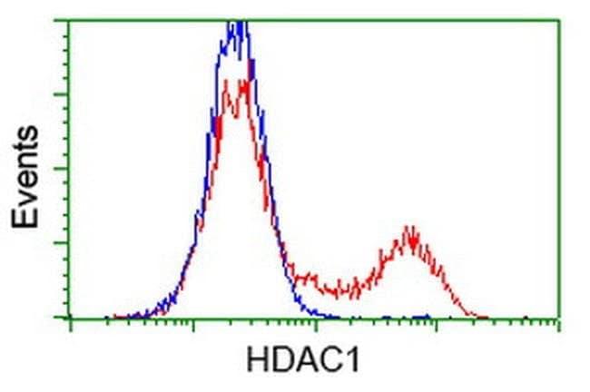 HDAC1 Mouse anti-Canine, Human, Mouse, Rat, Clone: OTI5F9, liquid, TrueMAB