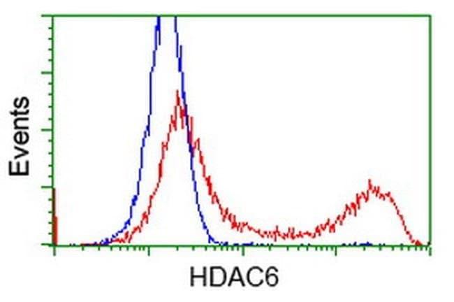 HDAC6 Mouse anti-Human, Clone: OTI3G7, liquid, TrueMAB  100 µL; Unconjugated