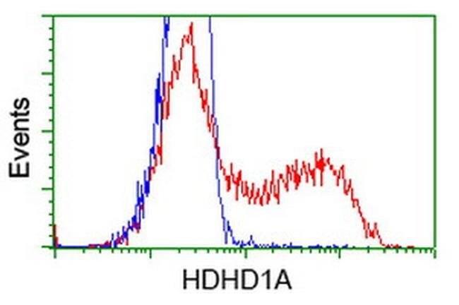 HDHD1 Mouse anti-Human, Clone: OTI3E5, liquid, TrueMAB  100 µL; Unconjugated