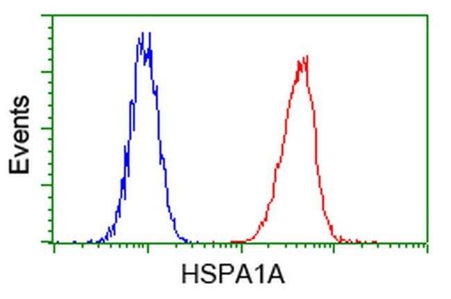 HSPA1A Mouse anti-Canine, Human, Clone: OTI5F3, liquid, TrueMAB  100 µL;