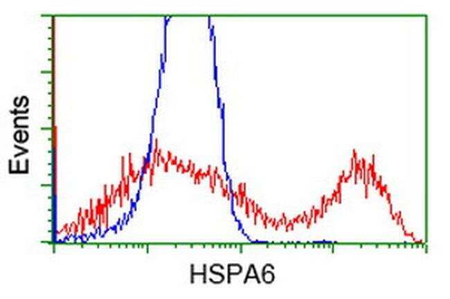 HSPA6 Mouse anti-Human, Clone: OTI1E11, liquid, TrueMAB  100 µL; Unconjugated