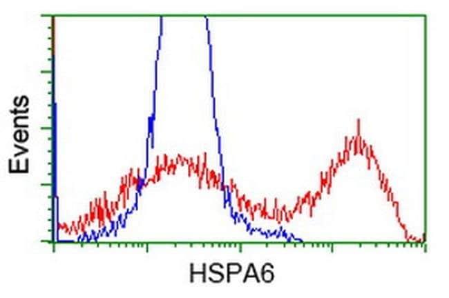 HSPA6 Mouse anti-Human, Clone: OTI2C2, liquid, TrueMAB  100 µL; Unconjugated