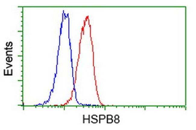 HSPB8 Mouse anti-Human, Rat, Clone: OTI1E3, liquid, TrueMAB  100 µL;