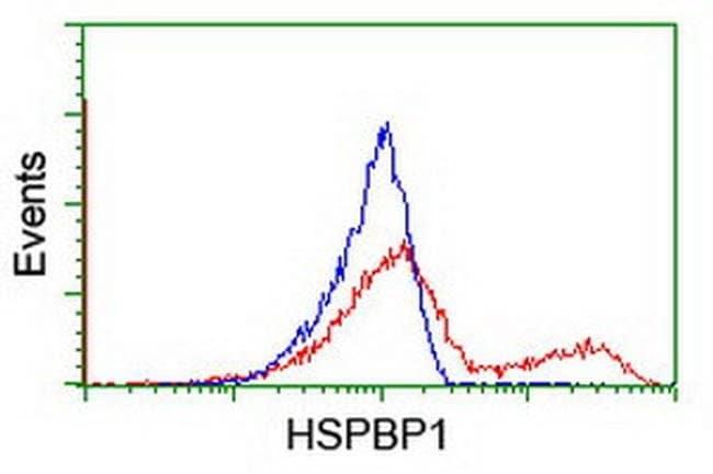 HSPBP1 Mouse anti-Human, Clone: OTI2D1, liquid, TrueMAB  100 µL; Unconjugated