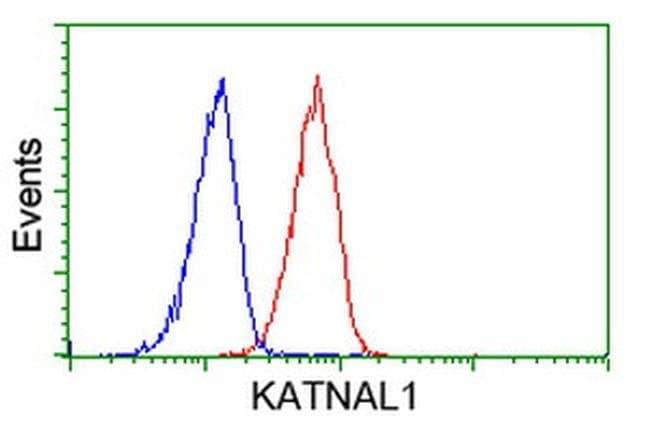 KATNAL1 Mouse anti-Human, Clone: OTI1F5, liquid, TrueMAB  100 µL;