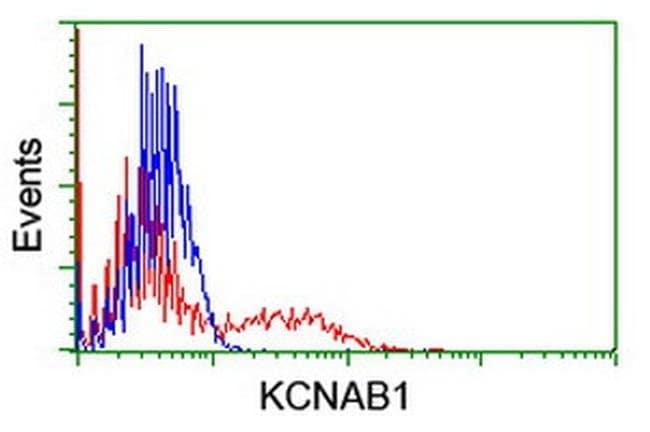 KCNAB1 Mouse anti-Human, Clone: OTI1C2, liquid, TrueMAB  100 µL; Unconjugated