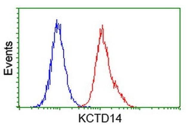 KCTD14 Mouse anti-Human, Clone: OTI1D1, liquid, TrueMAB  100 µL; Unconjugated