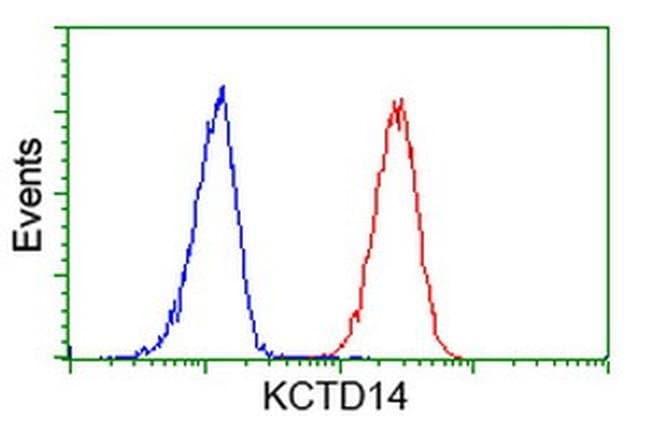 KCTD14 Mouse anti-Human, Clone: OTI2B9, liquid, TrueMAB  100 µL; Unconjugated