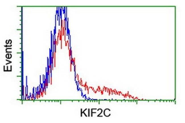 KIF2C Mouse anti-Human, Mouse, Rat, Clone: OTI1C5, liquid, TrueMAB  100