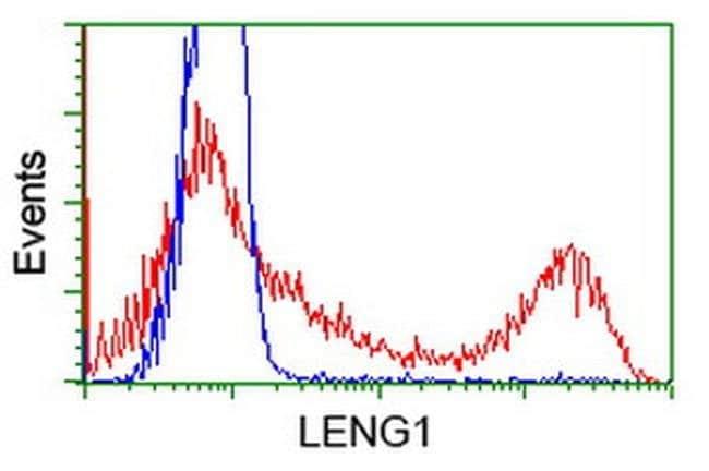LENG1 Mouse anti-Human, Clone: OTI1G10, liquid, TrueMAB  100 µL; Unconjugated