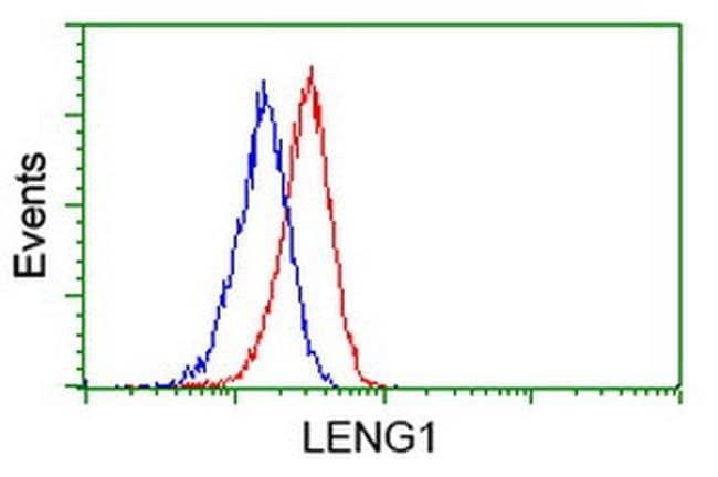 LENG1 Mouse anti-Human, Clone: OTI1E6, liquid, TrueMAB  100 µL; Unconjugated