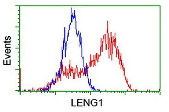 LENG1 Mouse anti-Human, Clone: OTI1C6, liquid, TrueMAB  100 µL; Unconjugated