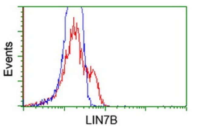 LIN7B Mouse anti-Human, Clone: OTI1F11, liquid, TrueMAB  100 µL; Unconjugated