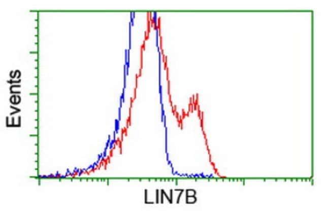 LIN7B Mouse anti-Human, Clone: OTI1G2, liquid, TrueMAB  100 µL; Unconjugated