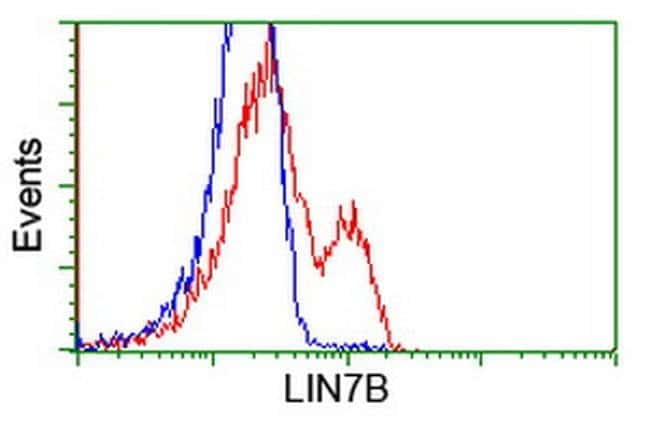 LIN7B Mouse anti-Human, Clone: OTI1E3, liquid, TrueMAB  100 µL; Unconjugated