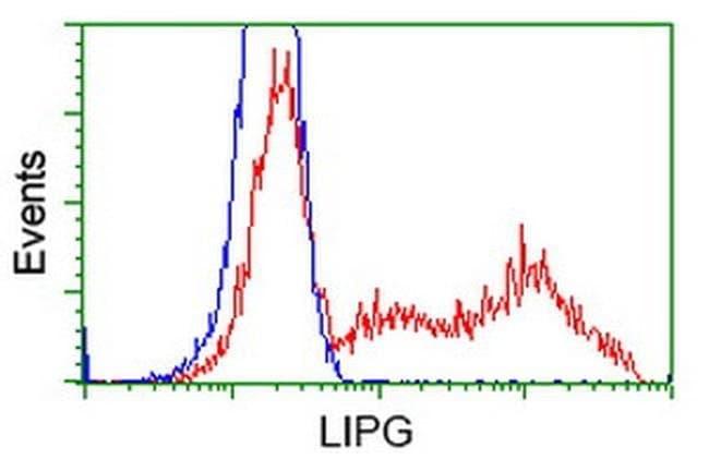 LIPG Mouse anti-Human, Clone: OTI2D5, liquid, TrueMAB  100 µL; Unconjugated