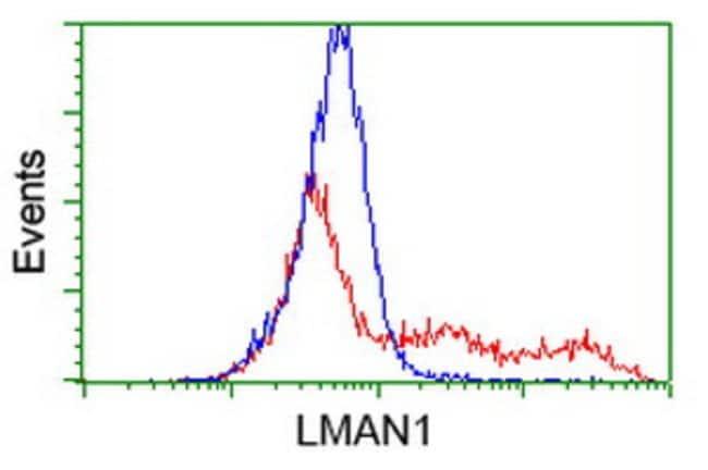LMAN1 Mouse anti-Canine, Human, Clone: OTI1E3, liquid, TrueMAB  100 µL;