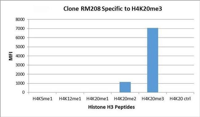 Tri-Methyl-Histone H4 (Lys20) Rabbit anti-Human, Invitrogen 100 µg;