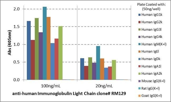 IgG (Light chain) Rabbit anti-Human, Invitrogen 100 µg; Unconjugated:Life