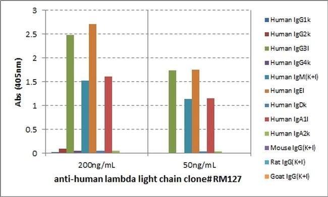lambda light chain Rabbit anti-Human, Biotin, Invitrogen 50 µg; Biotin:Life
