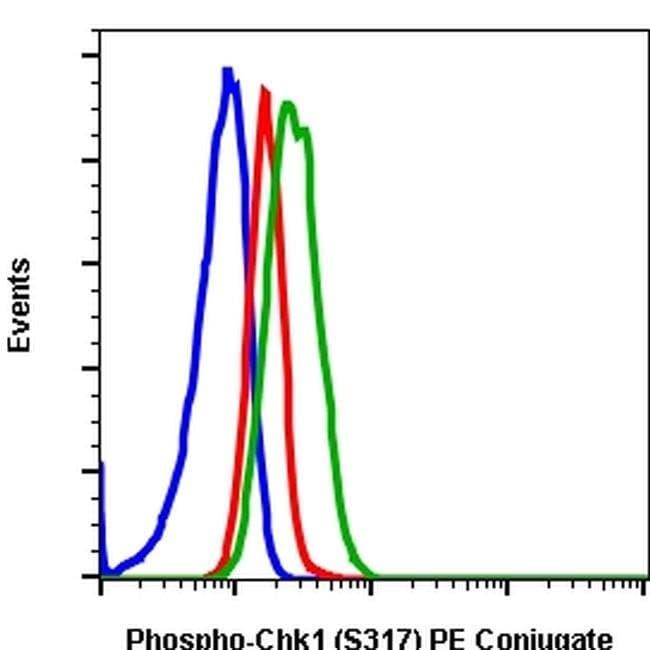 Phospho-CHK1 (Ser317) Rabbit anti-Human, Mouse, PE, Invitrogen 100 tests;