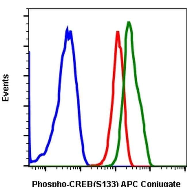 Phospho-CREB (Ser133) Rabbit anti-Human, Mouse, APC, Invitrogen 100 tests;