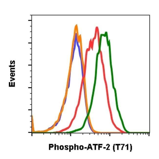 Phospho-ATF2 (Thr71) Rabbit anti-Human, Mouse, Invitrogen 200 µL;